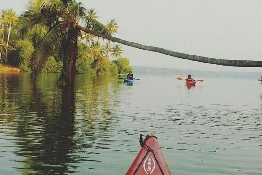 Kayaking in Paravur Backwaters of Kollam
