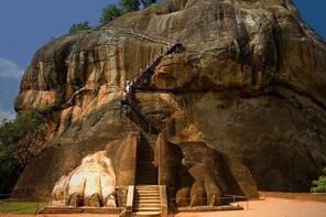 Private Colombo to Sigiriya Transfer with Sigiriya Rock Fortress and Dambul...