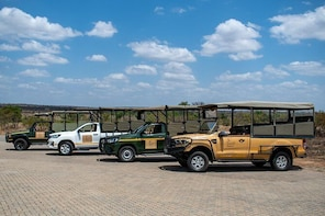 Full Day Kruger Safari Tour