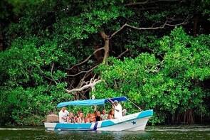 Los Micos Lagoon in Parque Nacional Punta Sal from Tela
