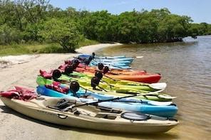 2 or 3 Hour Naples Kayak Rental with Single & Tandem Options