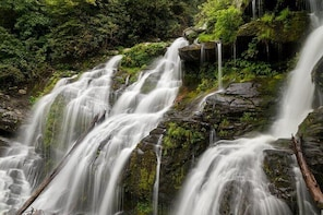 Guided Waterfall Hike - FREE for kids, and DOG-friendly!