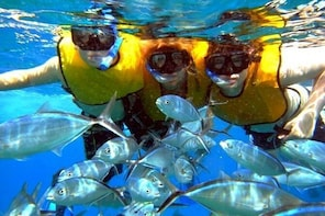 Isla Mujeres Deluxe All-Inclusive Day Trip from Cancun or Riviera Maya