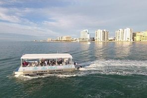Dolphin Sightseeing Tour of Clearwater Beach with Free Ice Cream