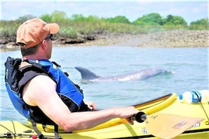 2-Hour Guided Kayak Eco Tour in Charleston