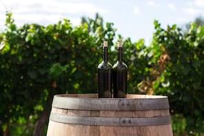 Grand Bordeaux Wine Private Tour / 5 Regions - 9 Chateaux