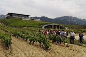 Private tour of La Rioja wineries with transport from Sansebastian.