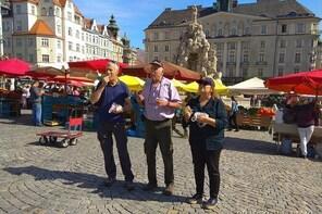 Brno daily tours