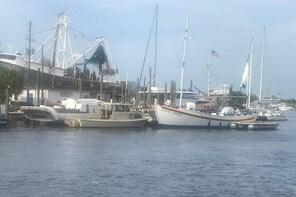 Sponge Dock Stroll
