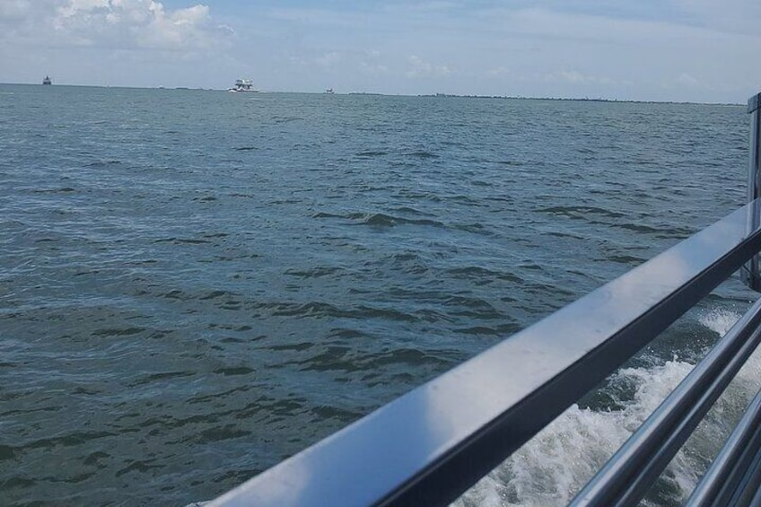 Show item 3 of 10. Dolphin Sightseeing Tour in Galveston with a Guide