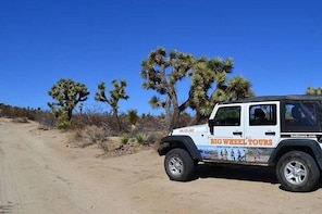 Joshua Tree National Park Driving Private Half Day Tour