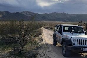 Half-Day Joshua Tree National Park Jeep Tour