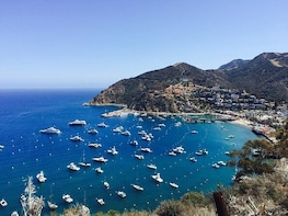 Catalina Island Day Trip from Los Angeles with Discover Avalon Scenic Tour