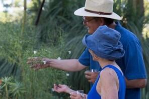Ruth Bancroft Garden General Admission Ticket