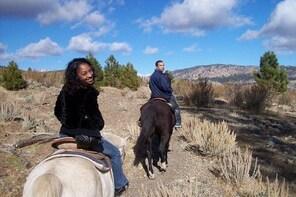 Horseback Riding Adventure from Reno