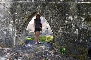 Half-Day North Coast Savaii Island Tour