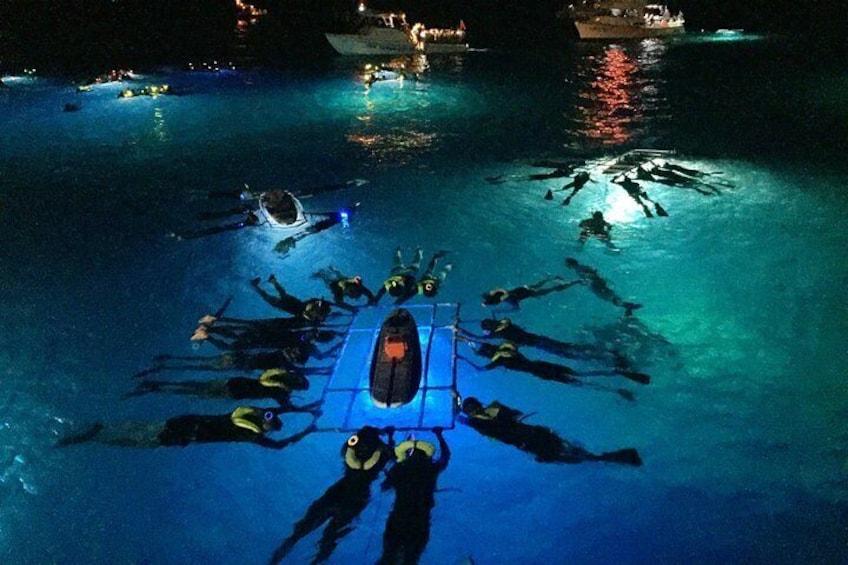 Night Manta Ray Adventure Guaranteed Sighting