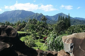 Skip the Line: Princeville Botanical Gardens Tour and Chocolate Tasting Tic...