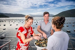 Marlborough Sounds Seafood Cruise from Picton