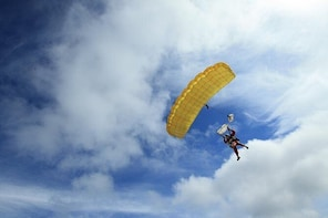 9,000ft Skydive over Abel Tasman with NZ's Most Epic Scenery