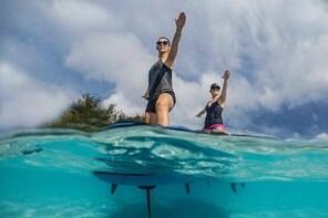 Paddle Board Yoga in Muri Lagoon