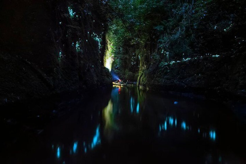 Deep in the Glow worm canyon