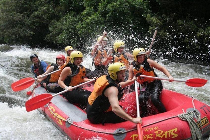 Rangitaiki White Water Rafting from Rotorua