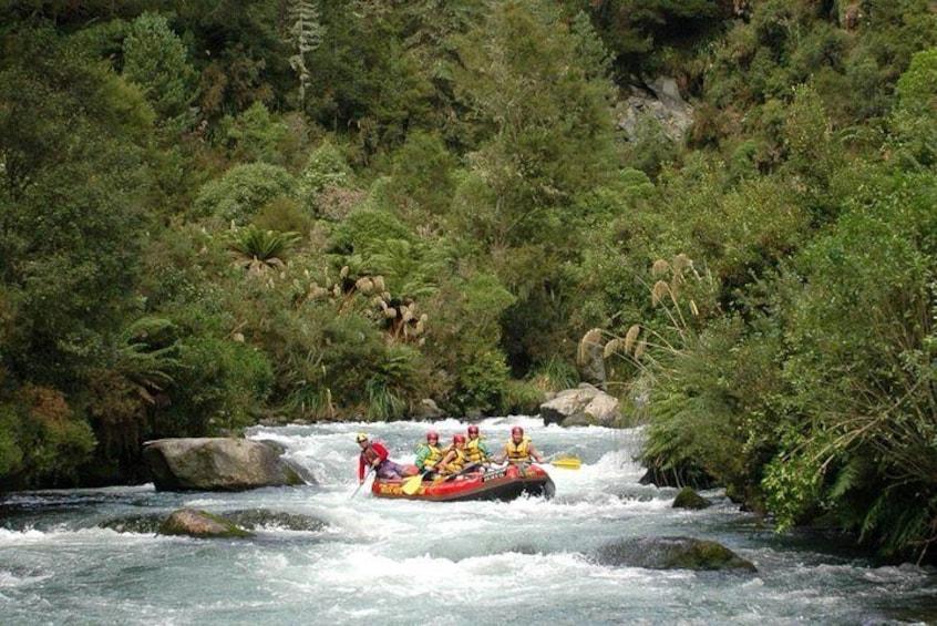 Rangitaiki River White Water Rafting from Rotorua