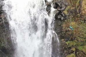 Waterfall Rappelling Adventure: 120 Foot Drop, 15 Minutes from Hilo