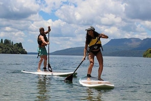 Rotorua Lakes Stand-Up Paddle (SUP) Scenic Tour