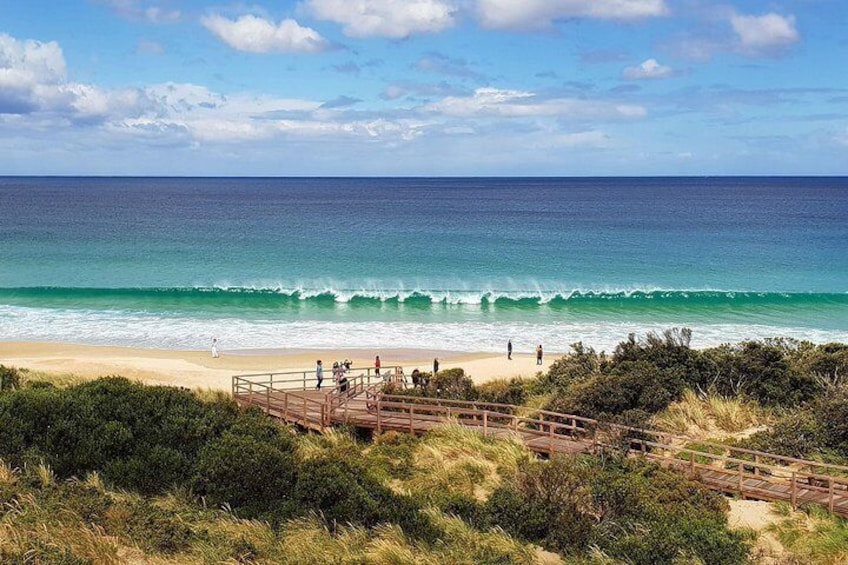 Bruny Island Neck Reserve and Beach