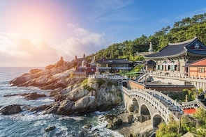 Full-Day Customisable Private Busan Highlight Tour