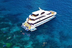 Great Barrier Reef Snorkelling and Diving Cruise from Cairns