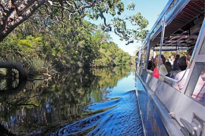 Noosa Everglades Serenity Cruise