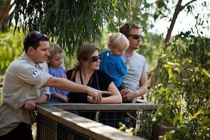 Phillip Island 3 Park Pass: Penguin Parade, Koala Centre and Churchill Isla...