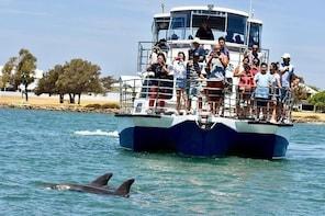 Mandurah Dolphin and Scenic Marine Cruise