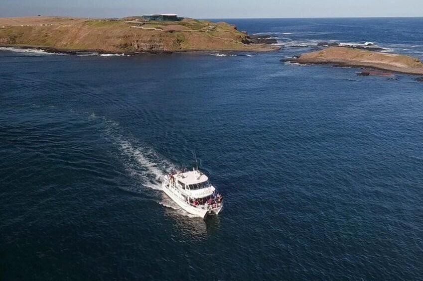 Cruise Phillip Island's scenic coastline