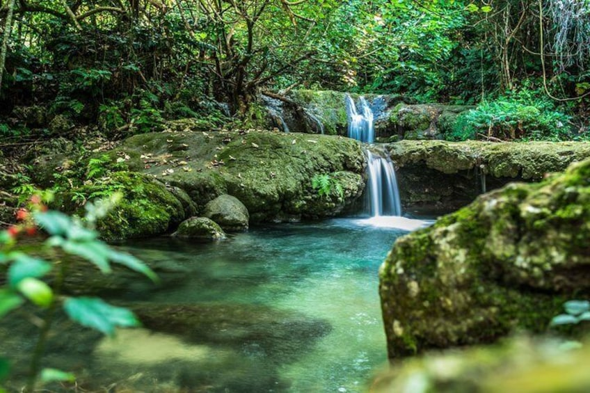 Mele Cascades and Waterfalls 3 Hour Guided Tour
