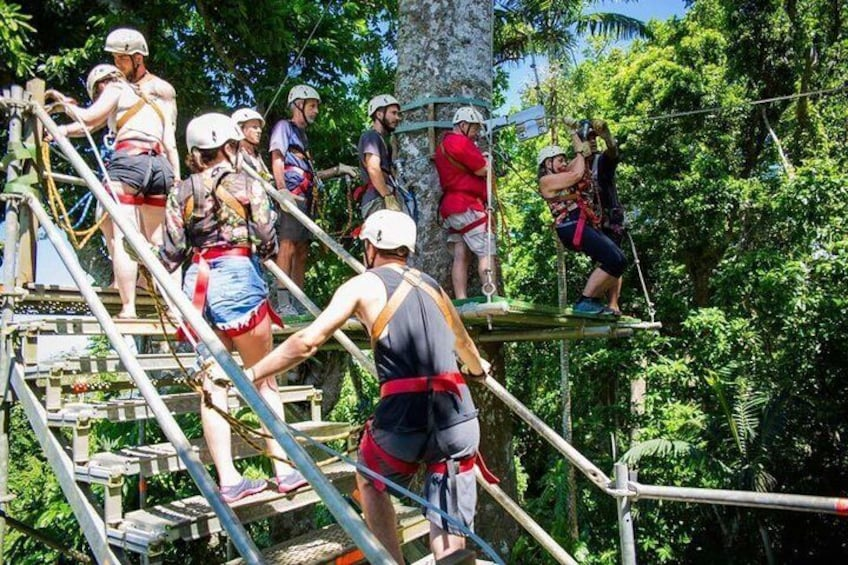 Show item 4 of 9. Climbing up the stairs at the start of the Canopy Tour