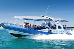 Seal Island Boat Tour from Victor Harbour