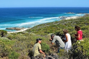 Margaret River Coastal and Wildlife Eco Trip from Busselton or Dunsborough