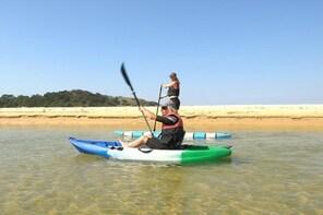 Coastal Adventure