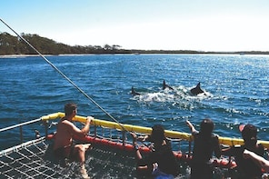 Jervis Bay Boom Netting and Dolphins Tour