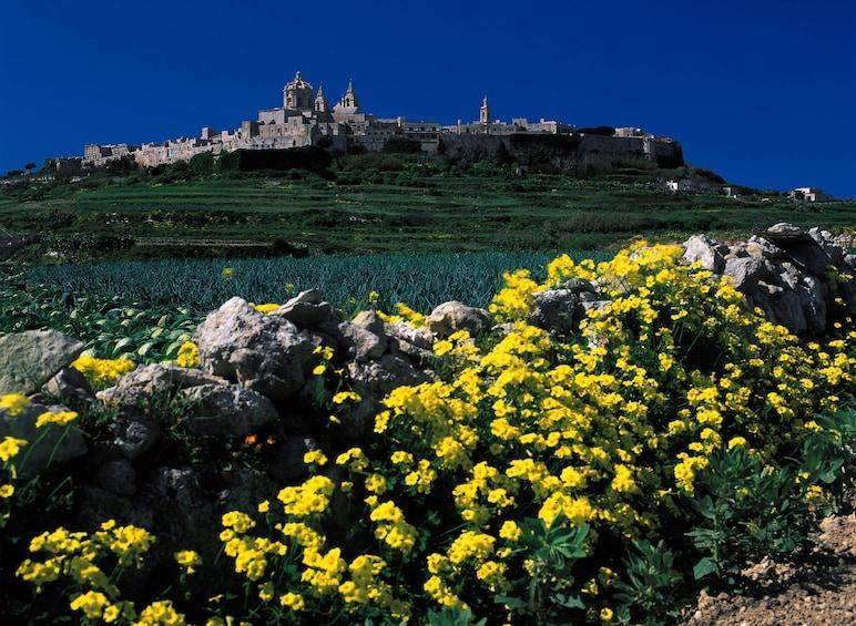 Show item 1 of 8. Mdina, Rabat, Dingli, San Anton, Ta'Qali & Mosta guided tour
