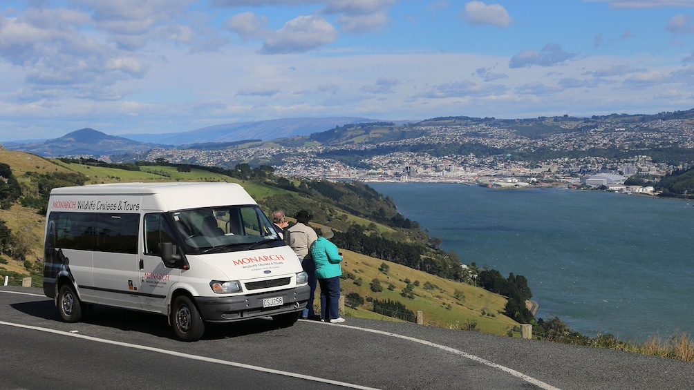 Show item 2 of 6. Wildlife Cruise & Larnach Castle Tour