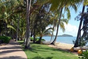 Palm Cove, Clifton Beach, Kewarra Beach to/from Cairns