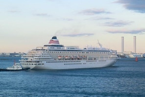 Yokohama Port Shared Transfer : from Yokohama Port to Narita Airport
