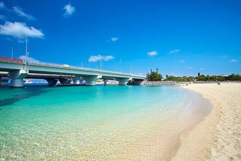 Show item 5 of 6. Okinawa Full-Day Private Tour with Government Licensed Guide