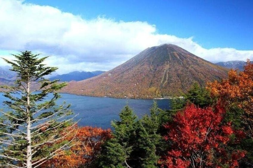 Nikko Full-Day Private Tour with Nationally-Licensed Guide