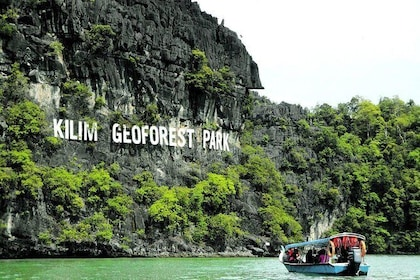 Discover Mangrove Forest and Cave Tour in Langkawi (Shared Tour)